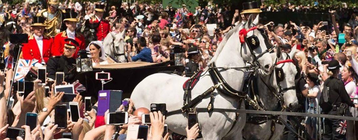 Harry Meghan Royal Wedding Case Study Links Broadcast